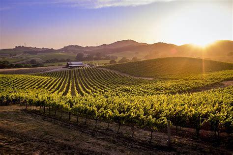 Mood Board: Wine Country Modern Organic